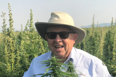 "Barry Lambert in a hemp plantation in Tasmania: ""Hemp is as safe – and natural – as broccoli or orange juice,"" he says."