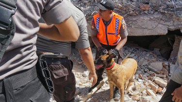 A rescue dog and his handler work at the side of the Karang Pangsor mosque in North Lombok.