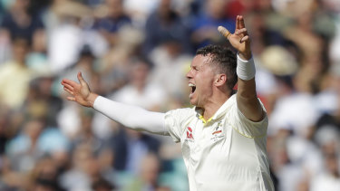 Peter Siddle hopes his Test career will continue this summer.