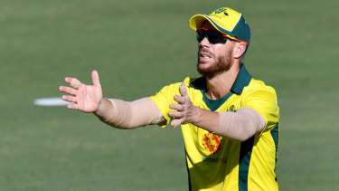 Ricky Ponting backs David Warner and Steve Smith to handle crowd attention in England.