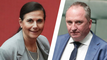 Liberal senator Concetta Fierravanti-Wells and former deputy prime minister Barnaby Joyce want bolder changes.