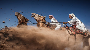 Oman's camel races were also added to the living heritage list