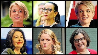 Clockwise: Kristina Keneally,Linda Burney, Tanya Plibersek, Terri Butler,Clare O'Neil, Ged Kearney.