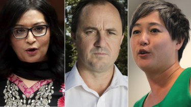 Mehreen Faurqi and Jenny Leong are not satisfied with the investigation into  Jeremy Buckingham - but it is unclear why.