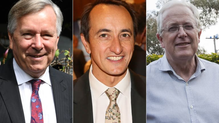 In contention for the seat of Wentworth: Peter King, Dave Sharma and Michael Feneley.