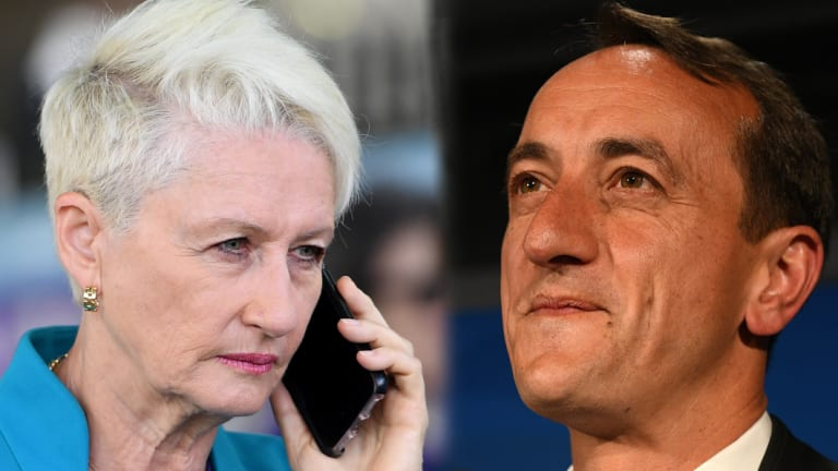 Kerryn Phelps and Dave Sharma are battling it out to win Wentworth.