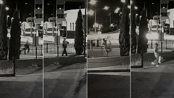Search for man after woman attacked and sexually assaulted at Sydney park