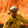 'Plenty more bush to burn': Severe fire danger for northern NSW