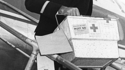 From the Archives, 1966: Rush of blood to Sydney