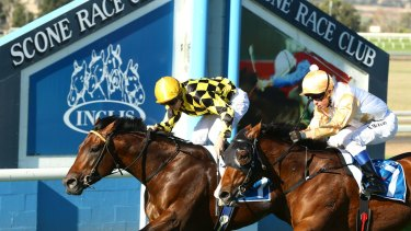 Racing returns to the equine capital of Australia Friday with an eight-race card.