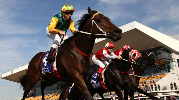 Melbourne Cup Day strike to halt major Qld race meets