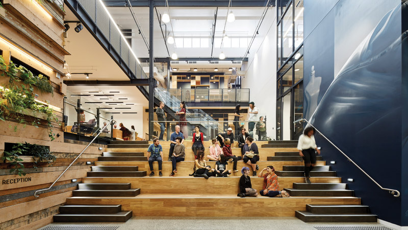 Education The Spotlight In Foy Gibsons Holistic Redesign
