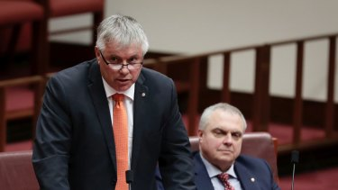Centre Alliance senators Rex Patrick (left) and Stirling Griff during question time in the Senate last year.