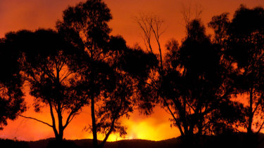The fire at Chum Creek as seen from Healesville on Black Saturday.