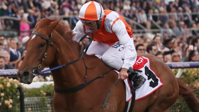 Damien Oliver riding Vow And Declare.
