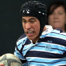 'He's a rugby man': Waratahs throw open doors for Suaalii