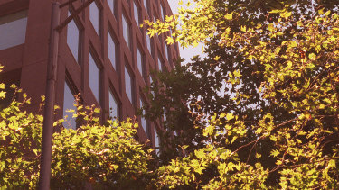 The office at 388 Lonsdale Street before it was converted to apartments.