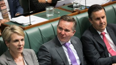 Shadow Treasuer Chris Bowen (centre) is the architect of Labor's dividend imputation plan.