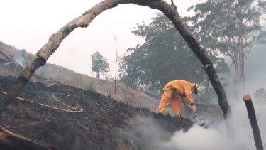 The Allandale Rural Fire Brigade dampen down a bushfire in the Scenic Rim last November.