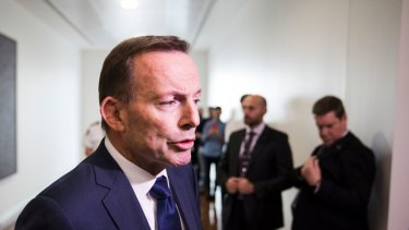 Tony Abbott is weighing up whether to take on the special envoy role.