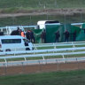 Horse dies after fall at Warrnambool jumps carnival