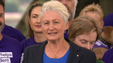 Kerryn Phelps did not rule out a future in politics on Monday.