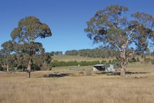 No house, just a shed: But the 110-acre property at 1067 Rochford Road, Newham in Victoria's Macedon Ranges sold for $1.8 million.