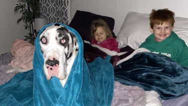 Rebekah Sawyer's children, Wyatt and Emma, and dog Paige, try to stay warm during the Texas power blackout.