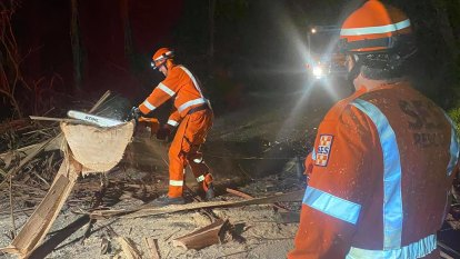 Trees down, buildings damaged as strong winds expected to persist