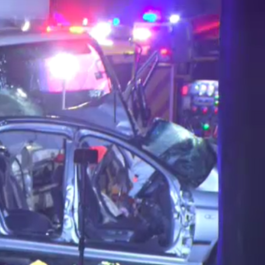 Homicide squad called in to investigate crash that left four young men dead