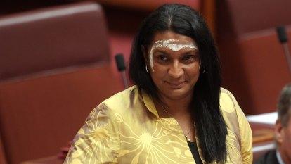 'Urgent acquisition': Olympian demands government seize copyright to Aboriginal flag