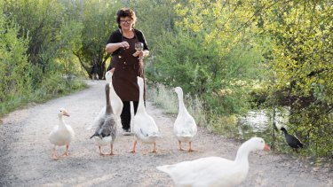 Alla Wolf-Tasker and the geese.