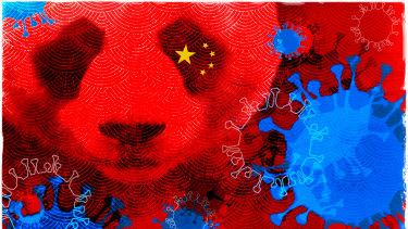 What coronavirus teaches us about China