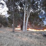 The fire as it approached Emma Mirco and Danny Patton's property.