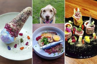 Riesa Renata posts Bowie's fancy meals on Instagram account @masterbowie2016. Pictured from left: dog-friendly ice-cream, surf-and-turf, and sushi-like degustation