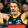 Tiger trouble: Crows heap on the pain, but at a cost