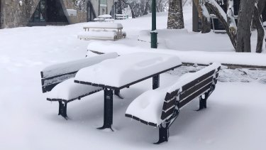 Mt Buller has been blanketed by fresh snow.