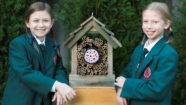 Amelia Lai and Caitlyn Walker have won this year's Australian Museum Eureka Prize for primary school science.