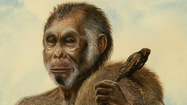 An artist's impression of Homo floresiensis.