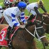Kolding faces Chipping Norton grand final over famous Randwick mile