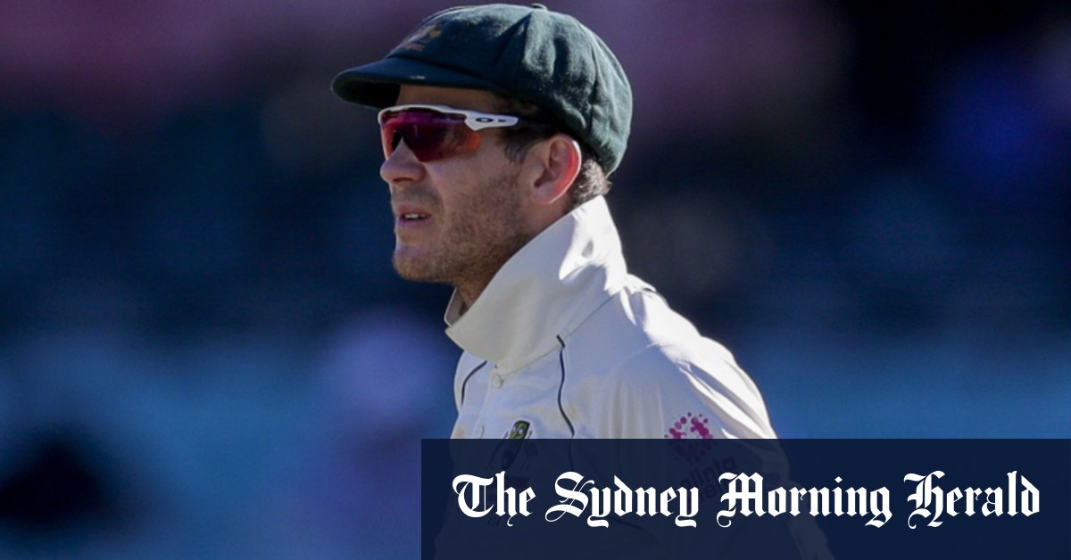 Paine retains captaincy for South Africa tour Wade dropped – Sydney Morning Herald