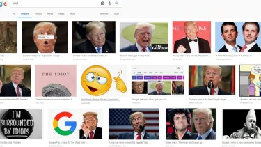"A screen shot of Google Images search results for the ""idiot"" on Wednesday."