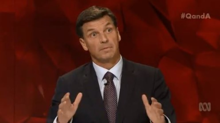 Liberal MP Angus Taylor was asked several times about bullying and the example set by politicians.