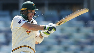 Australia Captain Tim Paine Warms Up For India Series With Unbeaten Sheffield Shield Ton