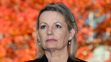 Liberal MP Sussan Ley has called for a quota in NSW.