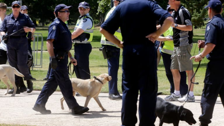 Zachary Currall was singled out by a police sniffer dog as he entered Sensations music festival last year.