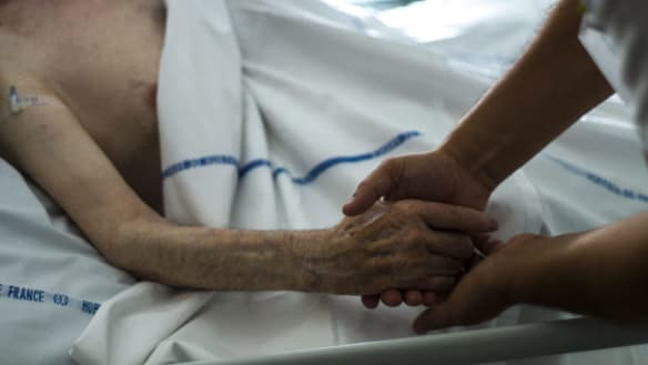 Euthanasia supporters want Queensland review fast-tracked