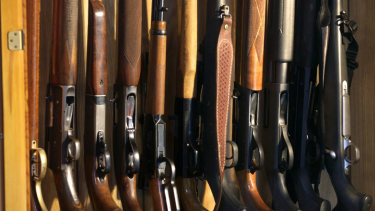 New Zealand's gun laws are considered more relaxed than Australia's.