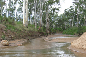 The Suttor River in central Queensland.