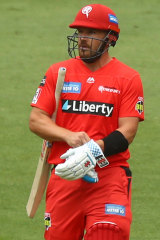 Aaron Finch is dismissed cheaply again against the Hurricanes.